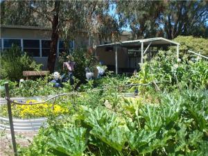 West Leeming Primary School's permaculture garden
