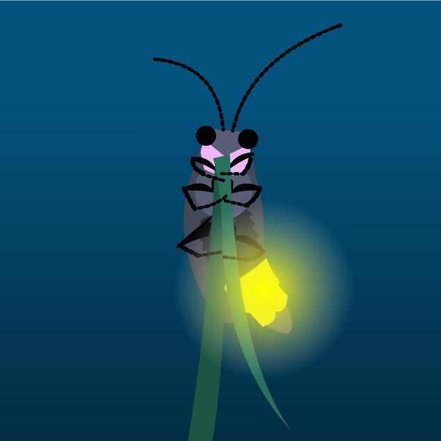 BHR Firefly